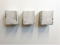 White Shadows (triptych) Ed Hall