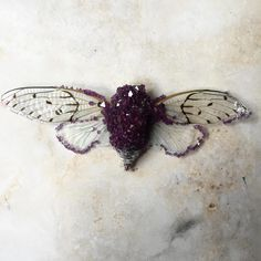 Crystal moth __ by tyler trasher