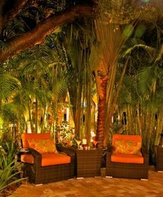Hammock's Cafe at The Inn at Key West. Relaxed dining in a tropical setting. www.theinnatkeywest.com