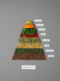 Sarah Illenberger / Sévigné Parfum No.3 - Fragrance Pyramide