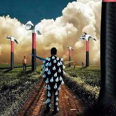 Floyd Pink Floyd Poster, Pink Floyd Art, Classic Rock Albums, Rock Progressif, Album Cover Design, Music Love, Rock Music, David Gilmour, Progressive Rock