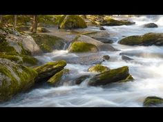 River Landscape Photography: How to photograph Moving Water