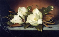 Giant Magnolias I Martin Johnson Heade