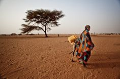 Drought, a poor harvest, and dwindling pasture have created a severe food crisis in the western Sahel. Oxfam and partners have mobilized across the region, aiming to reach more than a million people with aid.