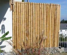 Paredes de Bambu