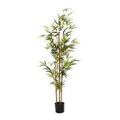 Dieser Kunstbambus ist ein absolut pflegeleichter und gleichzeitig geschmackvoller Dekoartikel! Die Blätter des künstlichen Bambus bestehen aus Textil und bestechen mit einem saftigen Grünton. Der Stiel wurde aus Tannenholz gefertigt und strahlt Natürlichkeit aus. Abgerundet wird das hübsche Gesamtbild durch einen Topf in auffälligem Kunststoffgeflecht. Verzieren Sie Ihr Zuhause mit dieser Kunstpflanze!