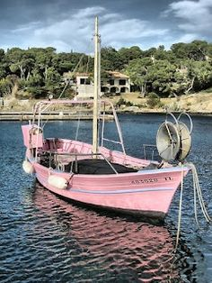 Pink boat by the beach