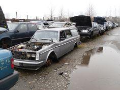 Volvos in BC junkyards (2012)