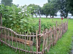 17 DIY garden fence ideas to keep your plants - enthusiast homeStick fence, I love that ! ST will not try it: /DIY garden fencingDIY garden fence: Unrolled the wooden fence, put the wire fence Diy Garden Fence, Backyard Fences, Garden Art, Roses Garden, Garden Beds, Garden Gates And Fencing, Garden Drawing, Rustic Gardens, Outdoor Gardens