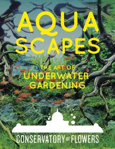 Aquascapes: the Art of Underwater Gardening, Conservatory of Flowers, (Golden Gate Park, San Francisco) #Exhibit #Aquascape