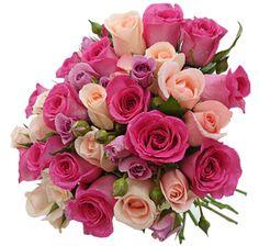 imagens-+de-+flores-imagens+(18).jpg (337×321)