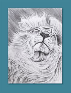 Hey, I found this really awesome Etsy listing at http://www.etsy.com/listing/124820786/lion-aceo-atc
