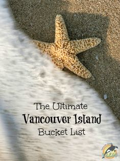 Are you looking for some great ideas or spectacular places to explore on Vancouver Island? Check out this ultimate Vancouver Island Bucket List! Victoria Vancouver Island, Vancouver Travel, Visit Vancouver, Victoria Island, Things To Do Camping, Camping Places, Camping Stuff, Travel Stuff, Camping Tips