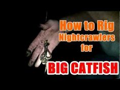 How to Rig Nightcrawlers for BIG Catfish - Flathead & Channel http://www.RodsintheDirt.com Jay Van Dam's big catfish this season that he caught on nightcrawlers. He'll show what rig he uses for nightcrawlers and how to use the worms. http://RenegadeTackle.com for the gear featured in this episode! http://WoodburyOutfitters.com Firearms, Archery and outdoor gear! http://AmaysingFishing.com World's best f...