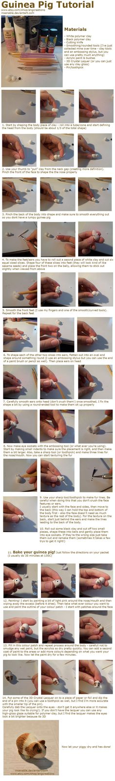Guinea Pig Tutorial by insanable.deviantart.com on @deviantART