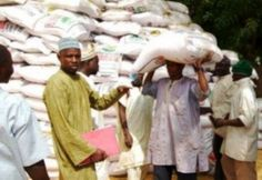 600,000 Farmers Benefit from GES in Adamawa