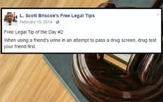 Funny Lawyer's Free Legal Tips Shouldn't Even Need Saying - The internet has generated a huge amount of laughs from cats and FAILS. In Laws Humor, Women Lawyer, Entertainment Sites, Drug Test, Funny Stories, Revenge, Dumb And Dumber, I Laughed, Drugs