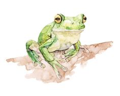 """Tree Frog Painting - Print from Original Watercolor Painting, """"White Lipped Tree Frog"""", Kids Room Decor, Green Frog, Frog Wall Decal, Frog"""