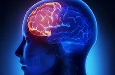 Vitaminas caseiras para melhorar a memória