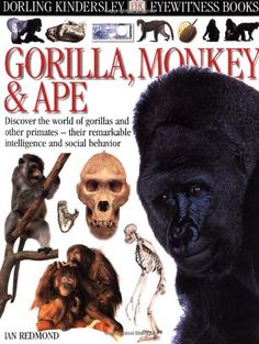 Eyewitness Books : Gorilla, Monkey & Ape by Ian Redmond
