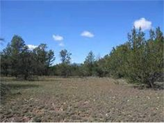 Datil, Catron County, New Mexico Land For Sale - 10.29 Acres