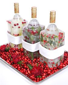 Love this way to display and keep the Vodka cold for a party
