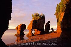 The Rocks;Hopewell Cape;Bay of Fundy;New Brunswick;Canada;landscape;erosion;sculpted;solitude;inspiration;dawn;morning;landscape;scenic;nature;environment;world's highest tides;tidal;flower pot rocks