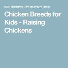 Chicken Breeds for Kids - Raising Chickens