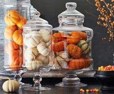One Kings Lane | Gourd Show:  Set the mood for Thanksgiving dinner right when guests enter. Clear jars filled with mini gourds make up a fabulous display that's simple to put together (even at the last minute!), and they can carry over as gorgeous centerpieces at the dinner table.