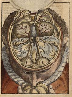 Bartisch, Georg. Ophthalmodouleia... [Dresde], 1583 (https://pinterest.com/pin/287386019948644563/). See: https://pinterest.com/pin/287386019944836540/