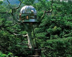 "Beach Rock Tree House  Kobayashi Takashi built this breathtaking treehouse in 2005 with the purpose of communicating with outer space. Perched in the treetops of Okinawa this ""plexiglass portal to the universe"" is a popular attraction at Japan's rustic Beach Rock Resort."