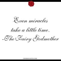 even miracles take a little time -the fairy godmother
