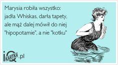 iQkartka.pl
