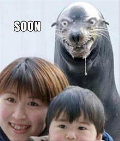 "Funny ""Soon"" Meme – 38 Pics"