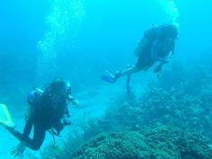 channel islands de californie   Flower Gardens Banks National Marine Sanctuary