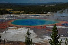 Yellowstone NP trip Photo