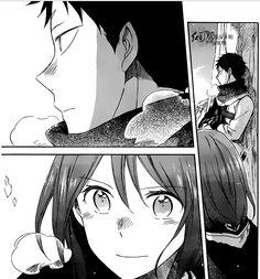 Akagami no Shirayukihime  Obi and Shirayuki