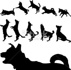 Leaping Dog Silhouette Dog silhouette series royalty