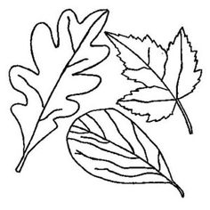maple autumn leaf decoration coloring page maple autumn leaf decoration coloring page kids play