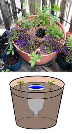 Idea : Self-Watering by Water Reservoir. Plant these reservoirs strategically throughout garden to make watering easier. Diy Jardin, Jardin Decor, Organic Gardening, Gardening Tips, Urban Gardening, Hydroponic Gardening, Urban Farming, Indoor Gardening, Vegetable Garden