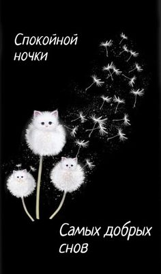 Hello Kitty, Good Night, Concept, Humor, Christmas Ornaments, World, Holiday Decor, Floral, Cards