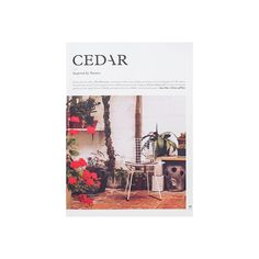 Cedar Magazine Issue 1