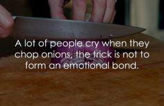 Tastefully Offensive on Tumblr