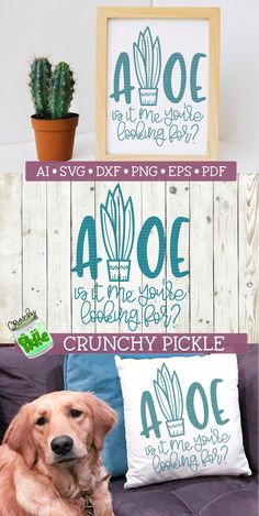 Aloe - Is It Me You're Looking For? Super cute SVG cutting file to use with your Cricut or Silhouette Cameo cutting machine. Use it to make DIY shirts, pillows or vinyl signs. Find Crunchy Pickle now on Design Bundles! #svgfiles #cricut #silhouettecameo - my links are an affiliate link to my own products Silhouette Projects, Silhouette Studio, Silhouette Cameo, Diy And Crafts, Paper Crafts, Cactus Shirt, Vinyl Signs, Craft Night, Diy Shirt