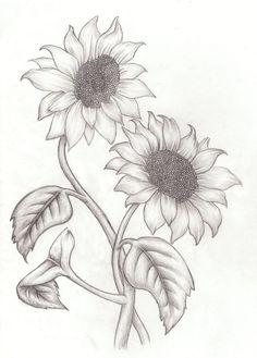 best 25 sunflower drawing ideas on sunflower tattoos Pencil Drawings Of Flowers, Pencil Art Drawings, Art Drawings Sketches, Easy Drawings, Art Sketches, Drawing Flowers, Realistic Flower Drawing, Sketches Of Flowers, Drawing With Pencil