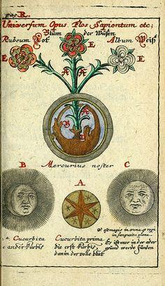 029-Joh. Michaelis Faustij ... Compendium alchymist….1706-Johann Michael Faust