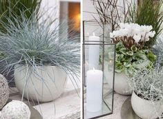 Ton i ton farger gir et stilrent uttrykk Moon Garden, Blue Garden, Garden Pots, Outdoor Pots, Outdoor Gardens, Outdoor Living, Modern Landscaping, Backyard Landscaping, Scandinavian Garden