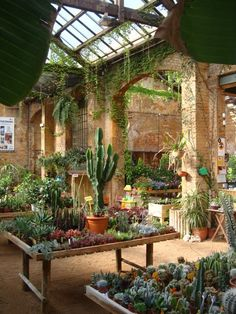 openhouse shop gallery paradise plants hivernacle garden center in Barcelona, Spain @the plant journal