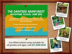 The Daintree Rainforest Adventure School Camp! Try something unique for your school camp this year! Introduce the class to the amazing Flora and Fauna of the 110-million-year-old Daintree Rainforest.