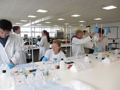 Group 3 working hard in the chemistry lab